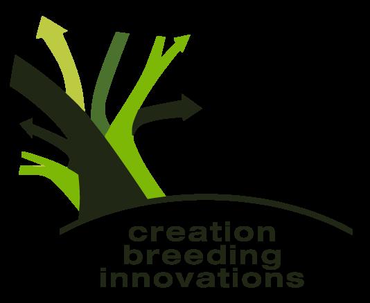 Creation Breeding Innovations